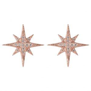 Celeste Star Earrings In Rose Gold