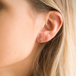 The Celeste Star Earrings In Rose Gold