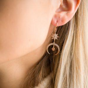 The Luna Earrings In Rose Gold